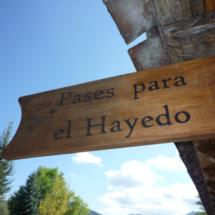 Para visitar el Hayedo de Montejo hay que acudir antes al centro de interpretación.