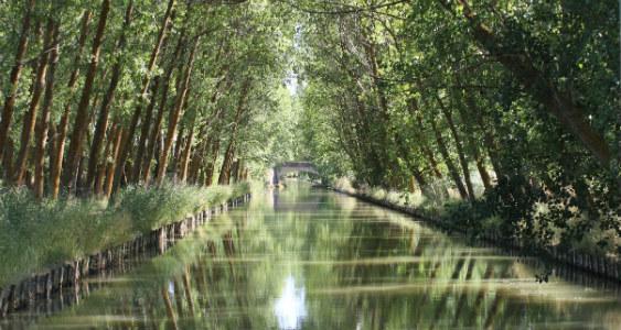 El Canal de Castilla se puede recorrer en barco para disfrutar de su entorno