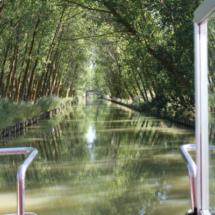 Vistas del entorno del Canal desde el barco