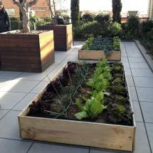 La Casa Encendida dedica un amplio espacio para la ecología.