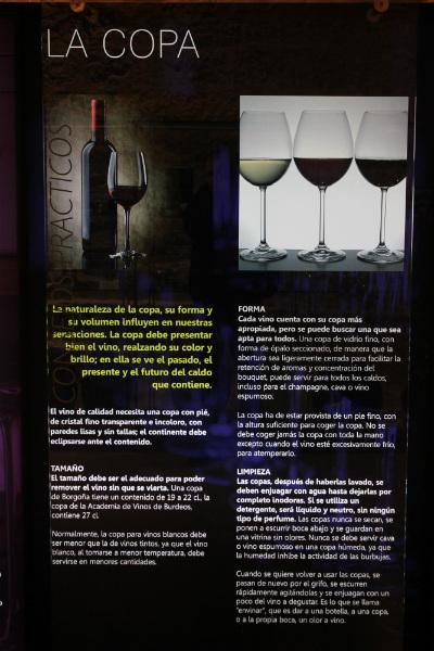 Museo del Vino de Peñafiel: la copa