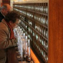 Museo del Vino de Peñafiel: visitantes