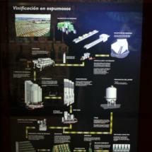 Museo del Vino de Peñafiel: espumosos