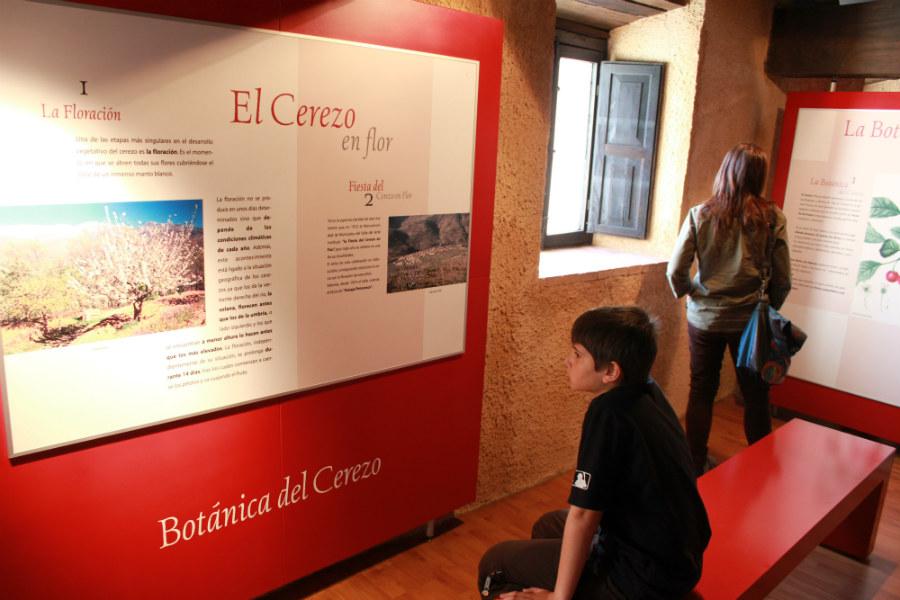 En este Museo podemos satisfacer las curiosidades de los niños sobre las cerezas