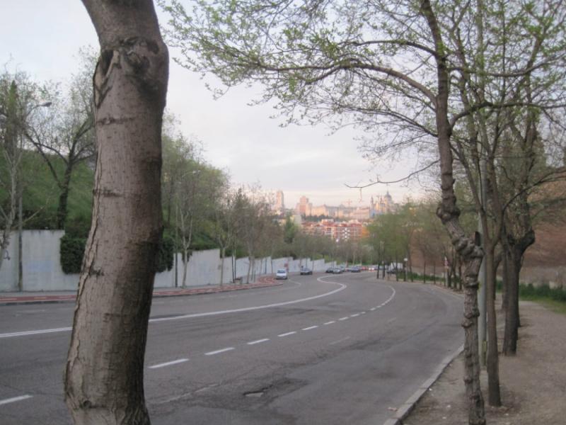 En Madrid se pueden encontrar moreras en puntos muy concretos