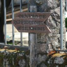 Indicador del centro de recuperación de salmónidos del Jerte
