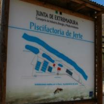 Piscifactoría del Jerte