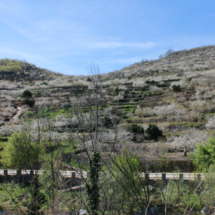 Vista desde el restaurante El Torcas