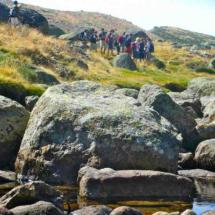 En el Campamento Gredos Centre organizan excursiones al campo