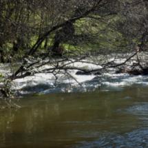 Río Valdemaqueda