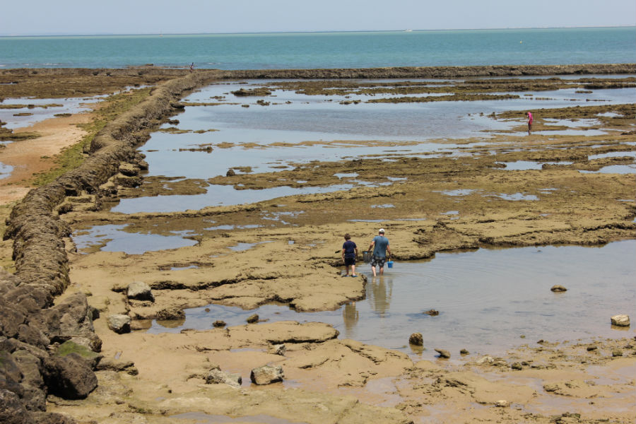 Vista de los corrales de las playas de Chipiona