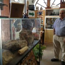 Vértebra de ballena en el Museo de las Raíces Conileñas