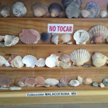 Balanza antigua en el Museo de las Raíces Conileñas