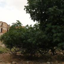 Visitamos el pueblo fantasma de Belchite