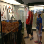 Museo antropológico: cabezas reducidas