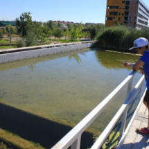 La Expo de Zaragoza, celebrada en 2008, fue la Expo del Agua