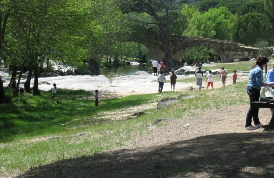 Pinar de Valdemaqueda, cerca de Robledo