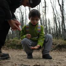 Los más pequeños descubren parcelas de la naturaleza en una ruta campestre: bichitos y plantas