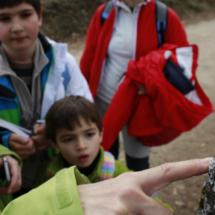 En nuestra ruta por la Cascada del Purgatorio los niño aprendieron a reconocer los hongos que pueblan los troncos de los árboles