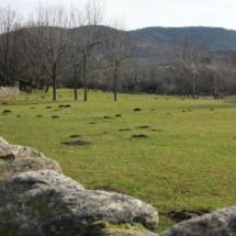 Pastos en la zona de la Cascada del Purgatorio