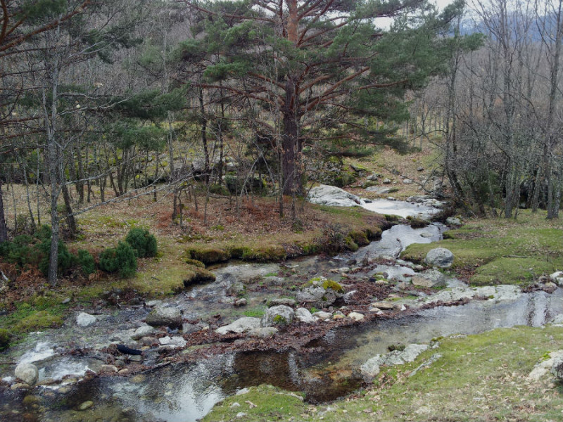 Arroyo Aguilón, en la Cascada del Purgatorio