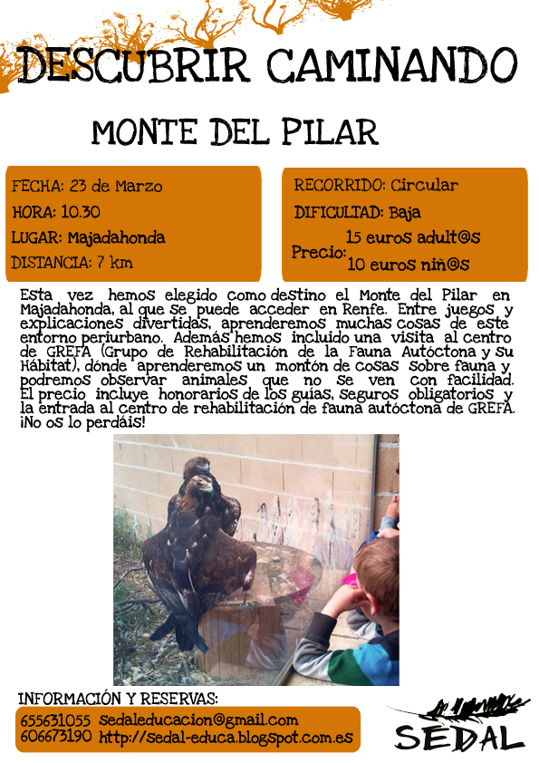 Descripción de la ruta por el Monte Pilar.