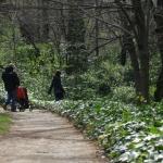 Concurso: El Jardín del Capricho retratado por los niños