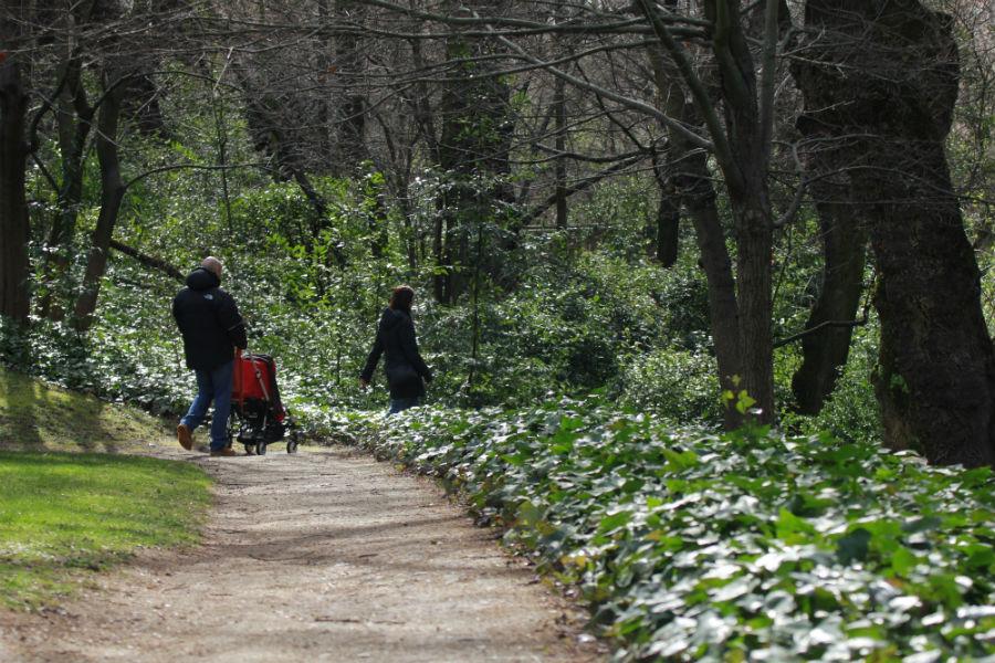 Paseo en el Parque del Capricho