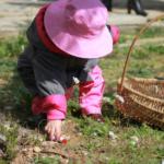 La búsqueda de los huevos de Pascua
