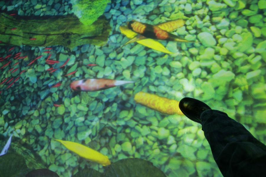 Acuario virtual en el hall del Gran Hotel Luna de Granada