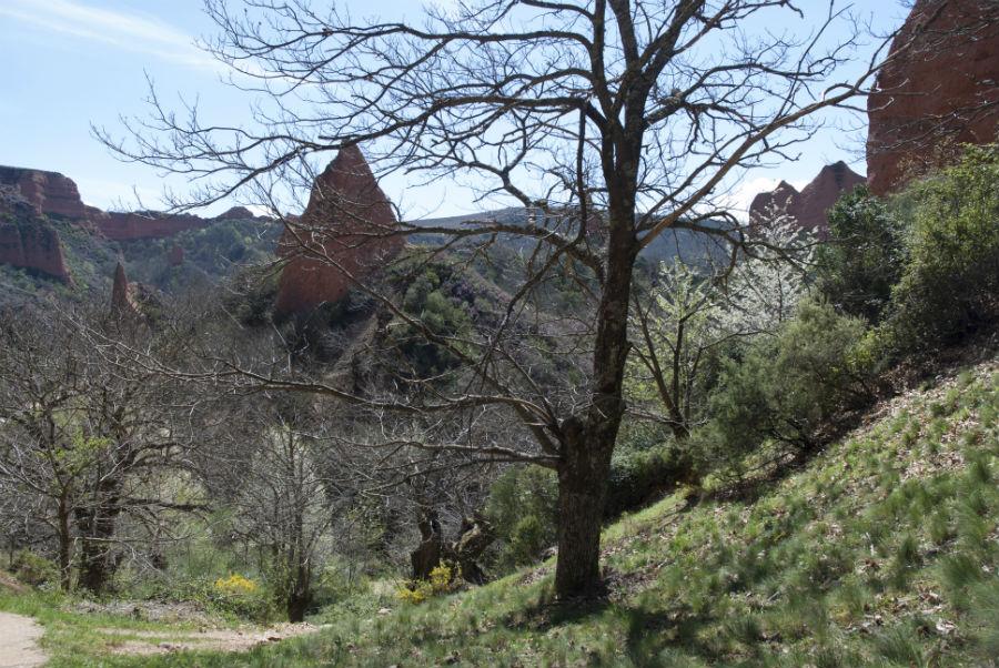 Horarios y precios para visitar Las Médulas, en León