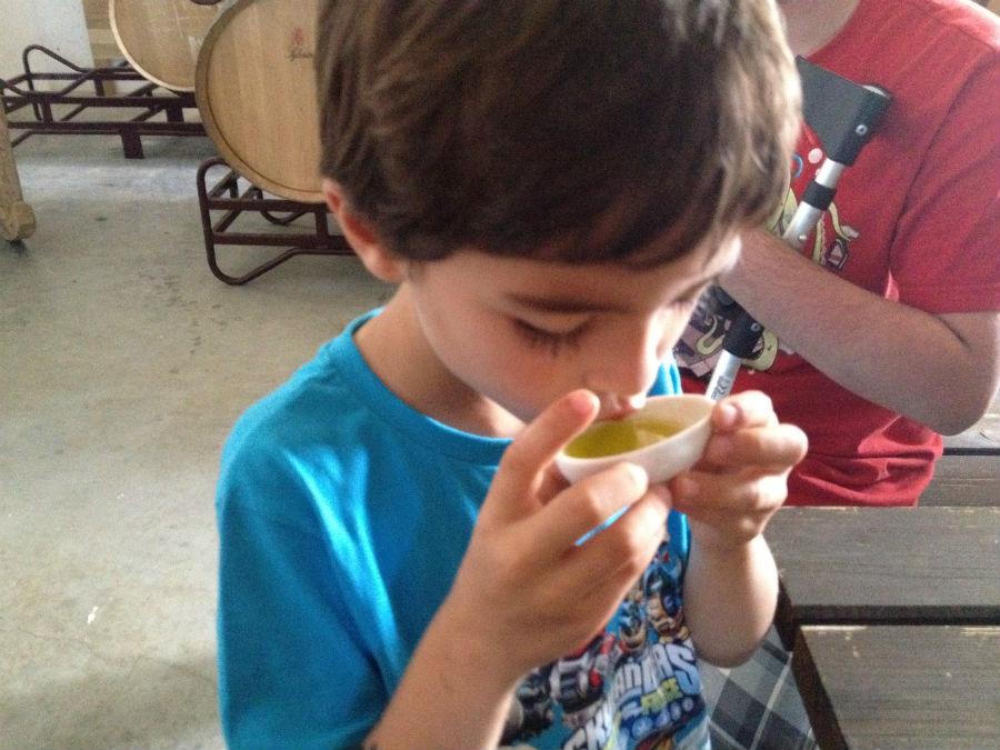 Aunque los pequeños no catan el vino, sí pueden hacer una cata de aceite.