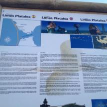 Paseamos por los alrededores del Faro de Roche