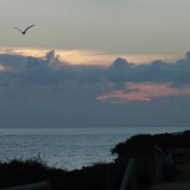 Vistas desde el Faro de Roche