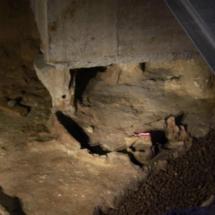 Visitamos el yacimiento arqueológico 'Gadir', sobre los orígenes de Cádiz