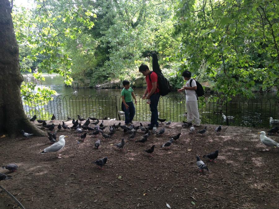 El Parque de Saint Stephen es un buen sitio para pasear en familia en el centro de Dublín.