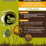 Hayedo de Montejo: 40º aniversario como Sitio Natural