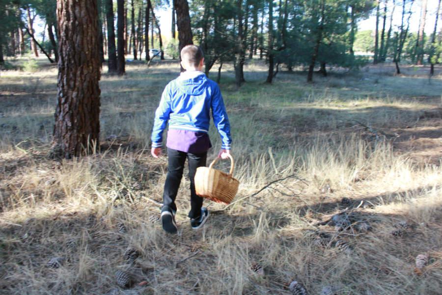 A los niños hay que inculcarles un gran respeto por la naturaleza en nuestras jornadas micológicas