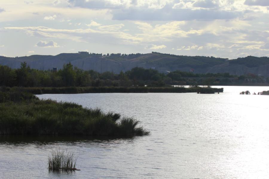 La Laguna del Campillo es de origen artificial