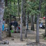 Picnic junto al Bosque de la Herrería (Madrid)
