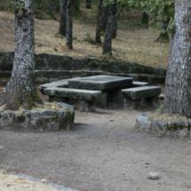 Área recreativa del bosque de la Herrería