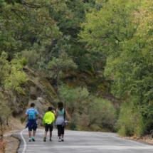 El Bosque de la Herrería se puede recorrer en una ruta a pie muy sencilla para los niños
