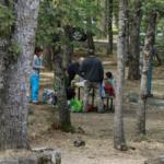 Picnic en el Bosque de la Herrería