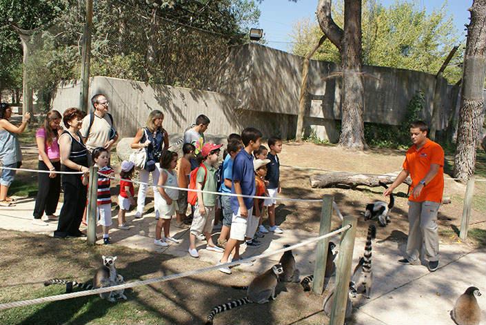 Actividades con animales en el Zoo de Madrid
