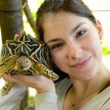 En el Zoo de Madrid se puede conocer muy de cerca a las tortugas