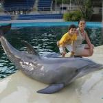 Talleres y actividades en el Zoo de Madrid