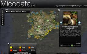 Micodata es un portal que identifica los lugares con setas