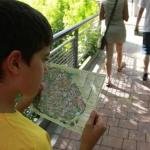 Consultando el plano del Zoo de Madrid