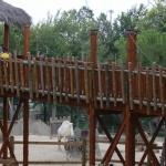 El Mirador de la Sabana es un puente colgante desde donde acercarse a la fauna de la sabana.