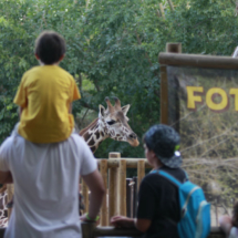 Visitamos el Zoo de Madrid con los niños
